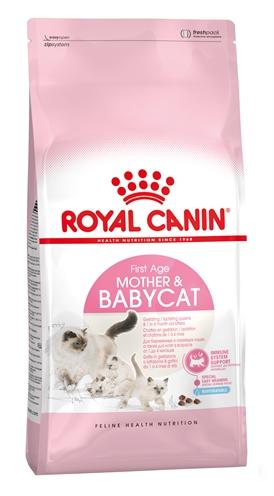 Royal canin babycat (2 KG)