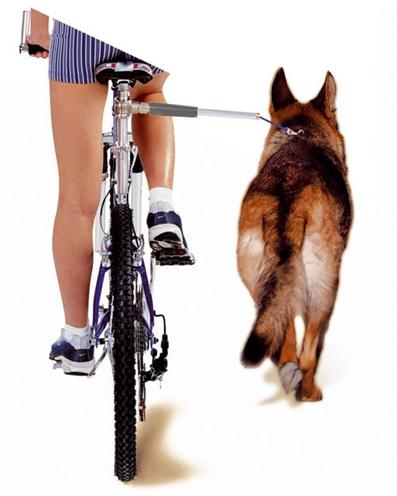Camon walky dog fietsbeugel (60X3X3 CM)
