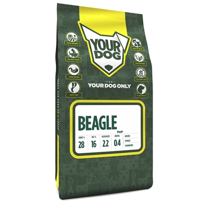 Yourdog beagle pup (3 KG)